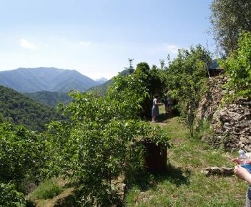 Небольшая частная ферма в окресностях Санремо_6
