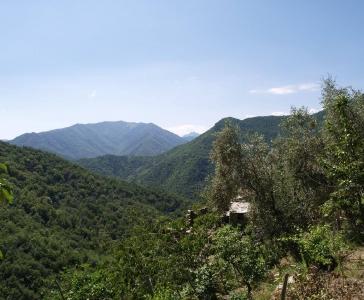 Небольшая частная ферма в окресностях Санремо_7